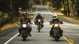 motorcycle animal highway