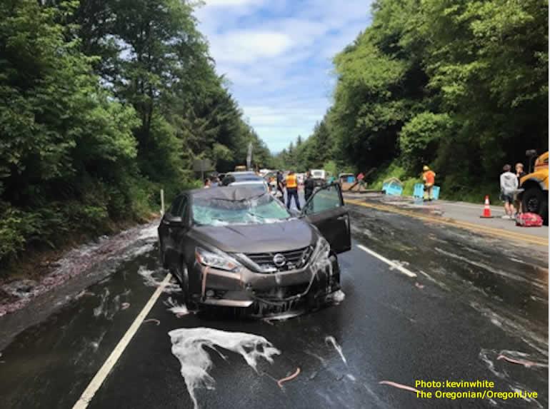 ford focus collision